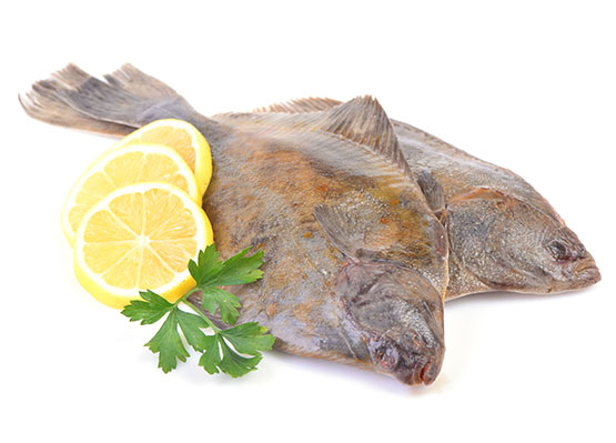 Fish-casse