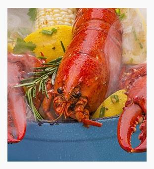Steamed-Lobsters_8a1bb9af01647958cde287d731c4ddca-min