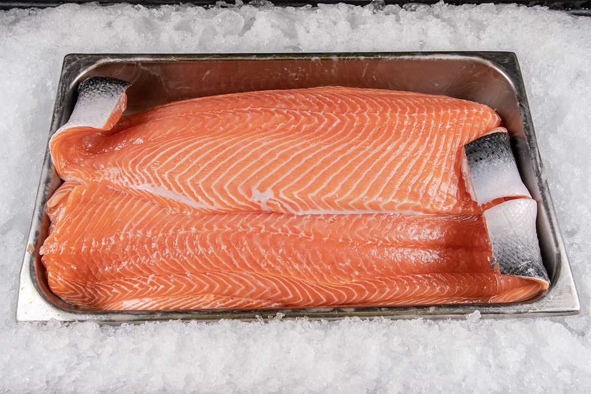 Farm-Raised-Salmon